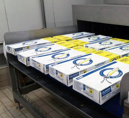 Calamares en caja cartón